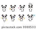 熊貓動物姿勢面部表情集 9988503