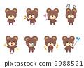 熊熊動物姿勢表情 9988521