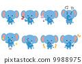 大像大象動物姿勢面部表情集 9988975