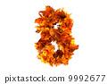 自然 树叶 秋天 9992677