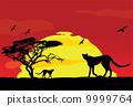 wild african animals at sunset 9999764