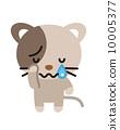 矢量 毛孩 貓 10005377