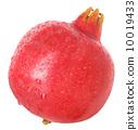 石榴 水果 甜蜜 10019433