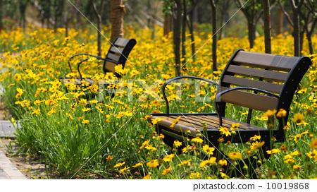 花叢中的長椅 10019868