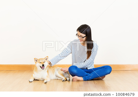 Asia woman with shiba at home 10084679