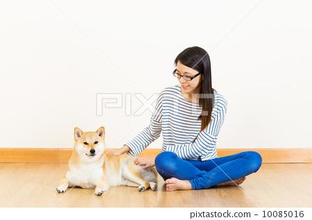 Shiba and woman 10085016