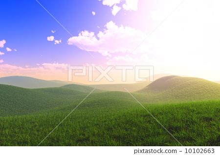 Summer Field 10102663
