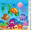 Image with undersea theme 7 10119274