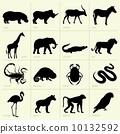 非洲 非洲人 動物 10132592