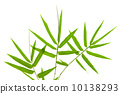 Bamboo leaves 10138293