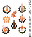 agriculture, wheat, symbol 10140162