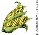 ear, sweetcorn, maize 10143115