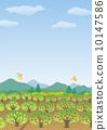 vector, vectors, orchard 10147586