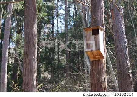 Hive box 10162214