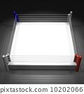 职业摔跤 格斗运动 垫子 10202066
