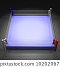 垫子 格斗运动 职业摔跤 10202067