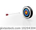 A bow and arrow 10204304