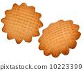 biscuit 10223399