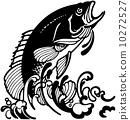 三文魚 鮭魚 魚 10272527