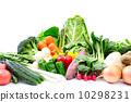 蔬菜 椰菜 胡蘿蔔 10298231