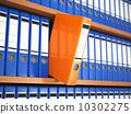 shelf, organization, office 10302275