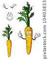 carrot, vegetarian, vegetable 10403833