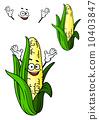 玉米 穀物 稻田 10403847