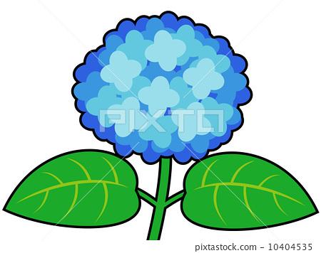 繡球花藍紫色與主線 10404535