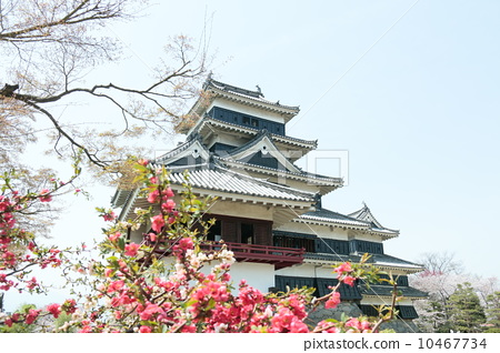 Matsumoto Castle 10467734
