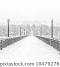 seasons, winter, tree 10479276
