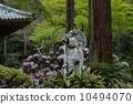 Sanzenin的Ozakura先生 10494070