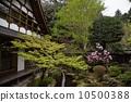Hohsenin的Tsurugame花園 10500388