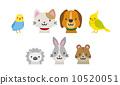 寵物 矢量 毛小孩 10520051