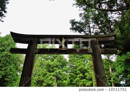 Nikko Toshogu 10531791