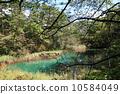 akanuma, goshiki-numa, lagoon 10584049