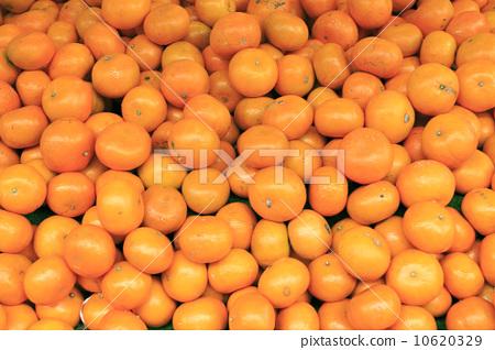 ส้มแมนดาริน 10620329