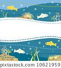 珊瑚 鱼 海洋 10621959