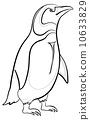 penguin, polar, bird 10633829