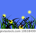 Firefly hunting 10638499