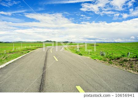 草原上的公路 10656941