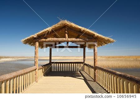 湖面上的凉亭 10656945