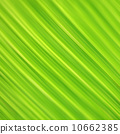 leaves, wallpaper, green 10662385