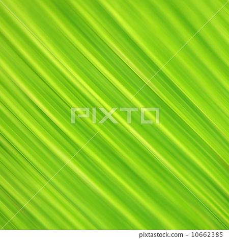 Green Leaf 10662385