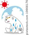 Sweat Doladara Polar Bear 10668176