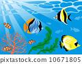 vector, vectors, tropical 10671805