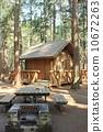 camping, ground, log 10672263