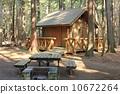 camping, ground, log 10672264