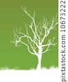 Tree 10673222