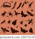 แมงมุม,เวกเตอร์,บิน 10673239