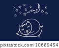 猫 猫咪 流星 10689454